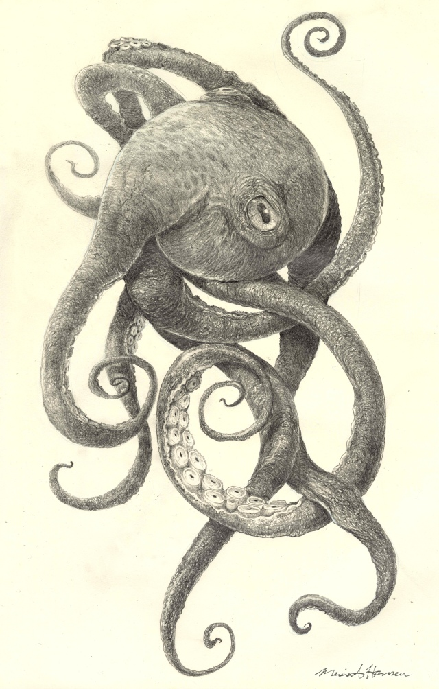 Tentacles_MH_sm